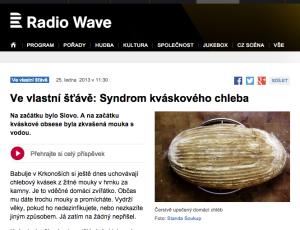 Radio Wave 25. 1. 2013 http://www.rozhlas.cz/radiowave/vevlastnistave/_zprava/ve-vlastni-stave-syndrom-kvaskoveho-chleba--1166615
