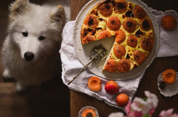 """Ve vlastní šťávě: """"Jídlo mě konečně neovládá, díky životu bez cukru jsem konečně našla svobodu,"""" říká Jana Černá"""