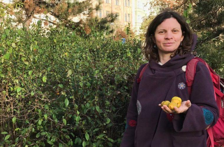 Ve vlastní šťávě: Praha je jedlé město – zkuste doplnit vitaminy kdoulovcem, říká nadšená sběračka divokých plodů