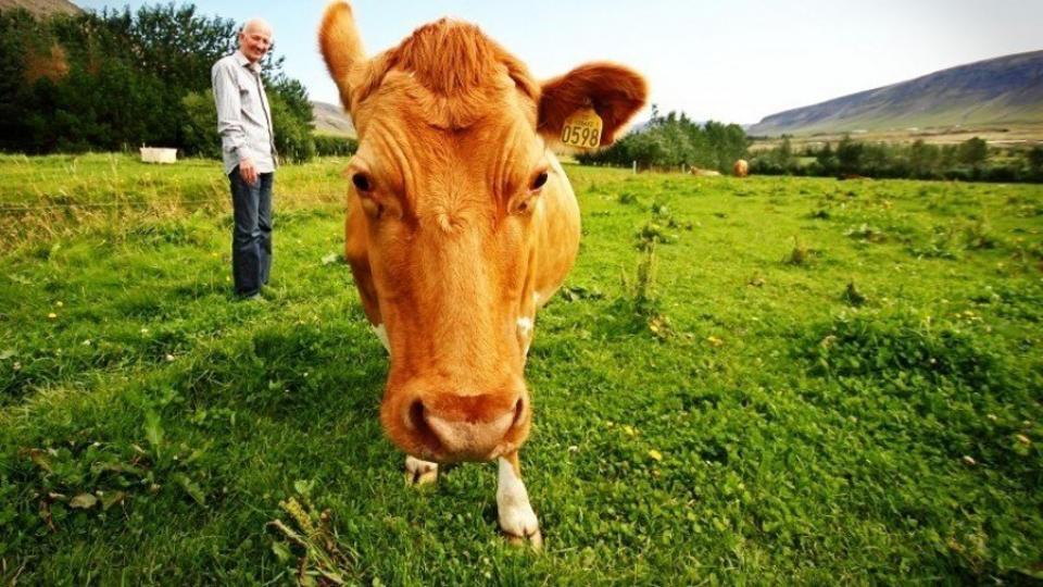 Ve vlastní šťávě: Vztahy mezi restauracemi a farmáři jsou velmi ceněná věc, tvrdí Jan Čulík